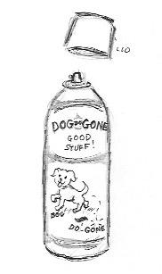 Dog Gone Ordor