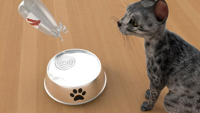 Pet Hydration Drops with Bowl